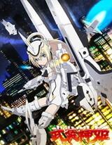 Боевые шинки OVA