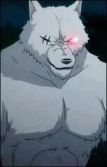 Lobo Wildman