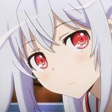 wolffirst