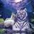 Тигр-В-Шкуре Витязя